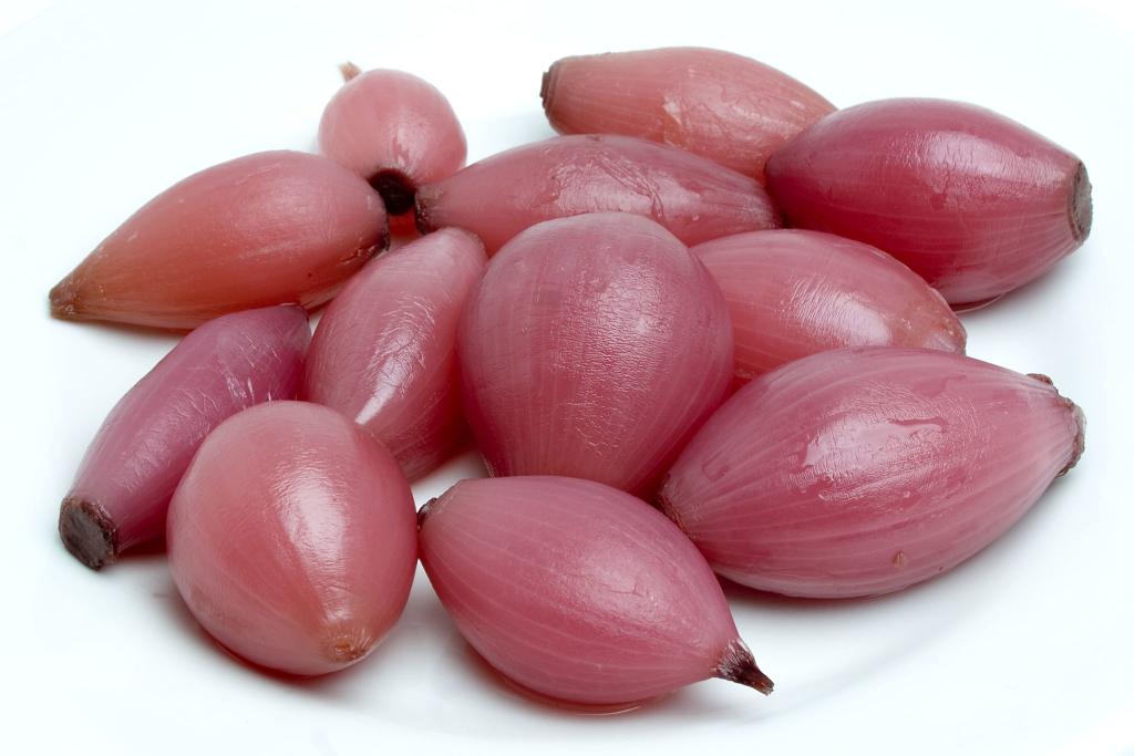 Cipolle Tropea - Zuccato