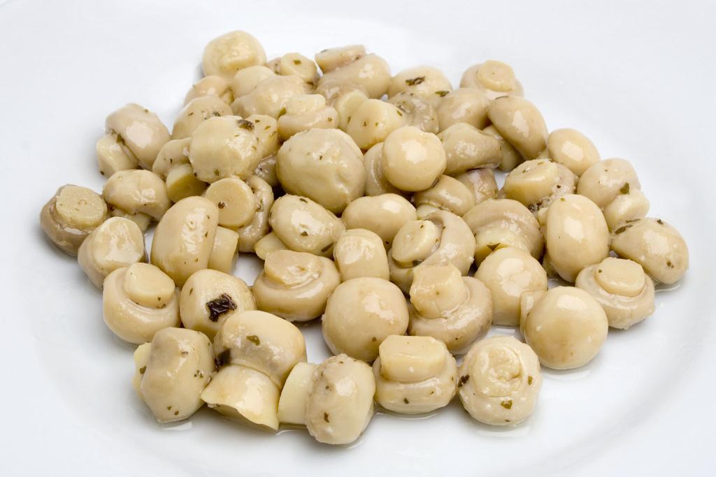 Funghetti - Zuccato